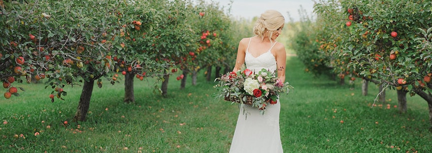 the meadow barn bride apple orchard