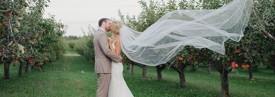 bride groom orchard kiss